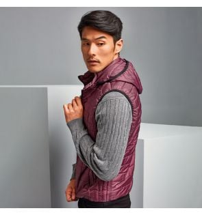 TS024 Honeycomb hooded gilet