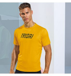 TR010 TriDri® performance t-shirt